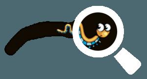 loupe solenvie-sol
