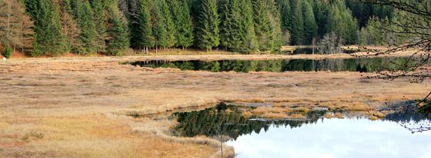 Solenvie - 3ème plan d'action zones humides sur Actu-Environnement