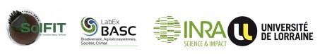 Journée Modélisation multi-échelle de l'activité biologique des sols