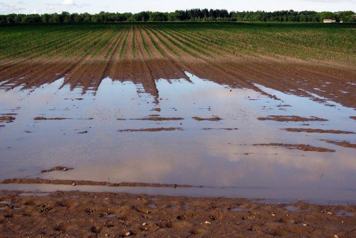 L'ampleur des inondations est accentuée par les mauvaises pratiques agricoles