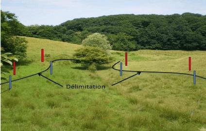 Schéma de principe de délimitation pédologique d'une zone humide