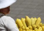 La demande                                                alimentaire devrait                                                augmenter de plus de 50 %                                                d'ici 2050 selon le WRI. ©                                                A. Rival, Cirad